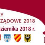 Adrianna Mierzejewska wybrana ponownie